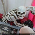 نمایشگاه محصولات ضد فرهنگی توسط پلیس امنیت بندرلنگه + تصاویر