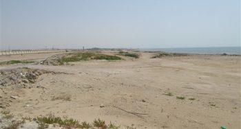 نبود زیر ساخت ها، مانعی برای توسعه گردشگری سواحل بندرلنگه+ تصاویر