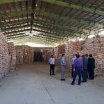 مهلت یک هفتهای دستگاه قضایی هرمزگان برای ترخیص ۵ هزار و ۷۰۰ تن برنج وارداتی